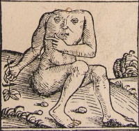 Blemmyes from Hartmann Schedel's Nuremberg Chronicle (1493) More of a torso face than a belly face.