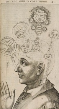 This page Science is part of the knowledge pages.  Illustration: Diagram of the human mind, from Utriusque cosmi maioris scilicet et minoris metaphysica, page 217[1] by Robert Fludd