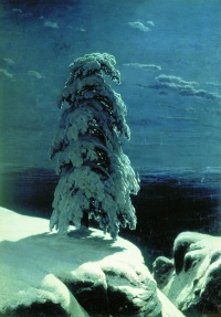 In the Wild North[1] (1891) is a painting by Ivan Shishkin, in the collection of the Kiev Museum of Russian Art.