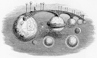 Interplanetary Bridge from Un autre monde (1844) by Grandville